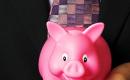 Savings Pig